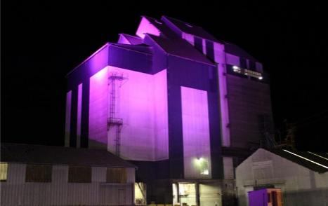 usine Noyelle rose
